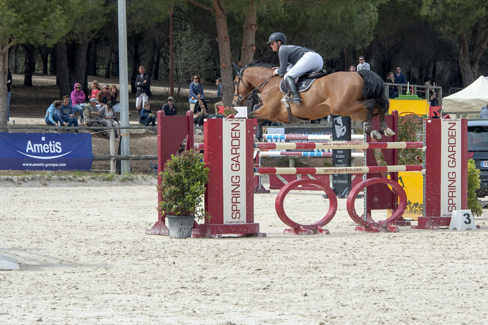 Jumping National de Grammont à Montpellier